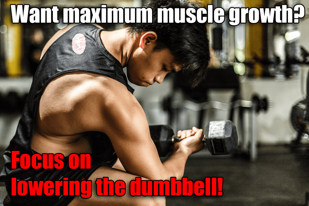 max muscle gains dumbbell